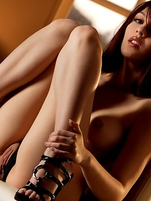 Cassie is a new Babe, she's playful and sweet... Come and get lost in her fascinating dark eyes.